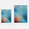iPad Pro 12.9インチを持ち運んでる人は少数派?